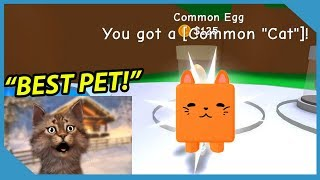 I got the Best Pet in Roblox RPG Simulator