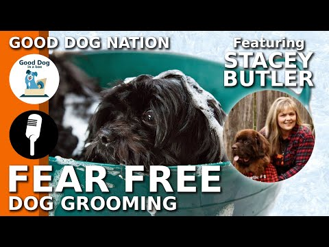 [grooming]:-fear-free-dog-grooming-w/-stacey-butler-|-good-dog-nation-ep-#3-(2019)