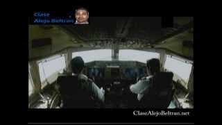 Logistica de transporte aereo de Elefantes Vivos, Motor y flores