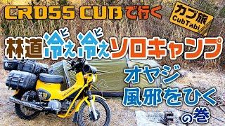 林道冷ぇ冷ぇソロキャンプ ~オヤジ風邪をひくの巻~(クロスカブでキャンプに行こう!) thumbnail