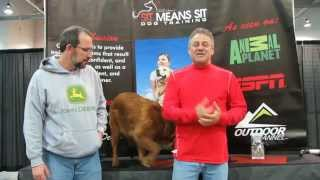 Sit Means Sit Columbus | Dog Trainer - Terry Cook