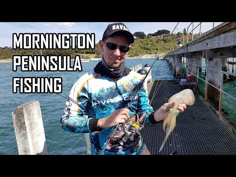 Fishing Mornington Peninsula