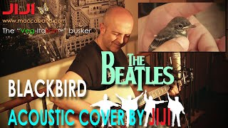 Blackbird | The Beatles/Paul McCartney cover by Jiji