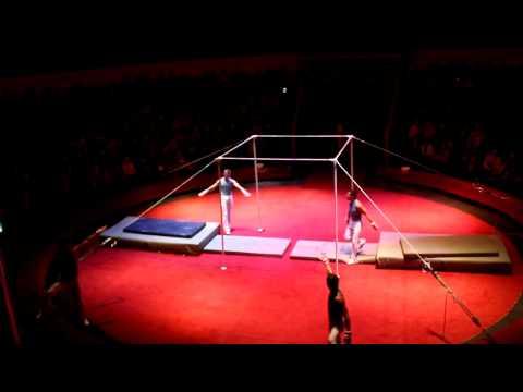 Gymnastics Show High Bars