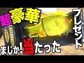 【プレゼント企画】超豪華夏の魚つりルアープレゼント企画だよ!