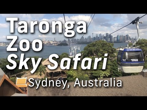 Taronga Zoo Sydney Cable Car Ride Featuring Views of Sydney Harbour