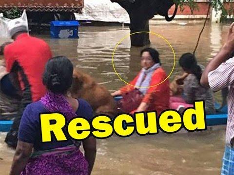 Veteran Actress Lakshmi rescued from flood | Chennai floods 2015 | Tamil Acterss - entertamil.com