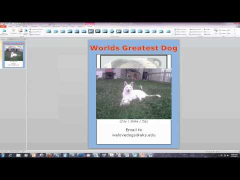 PowerPoint - How to crop pictures in PowerPoint
