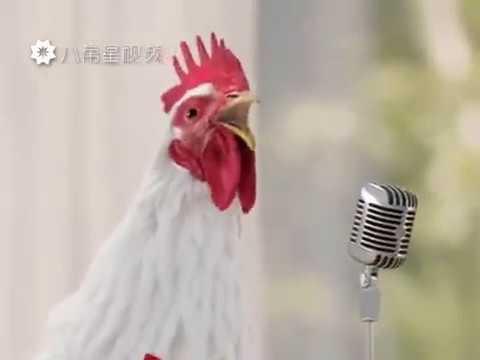 Куры поют! Поющий петух! Куриный клип! Хит 2017 года! Супер!