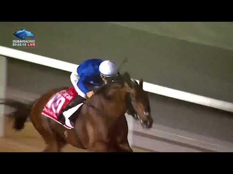 Dubai World Cup 2018: Race 9 - Dubai World Cup Sponsored By Emirates Airline