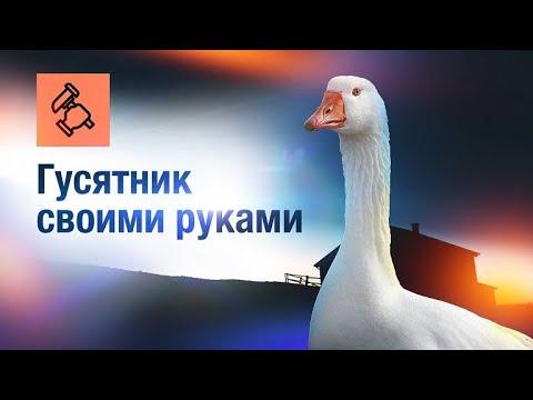 Загон для гусей своими руками фото