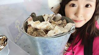 牡蠣を炭火焼!北海道厚岸の海の幸を食すLive