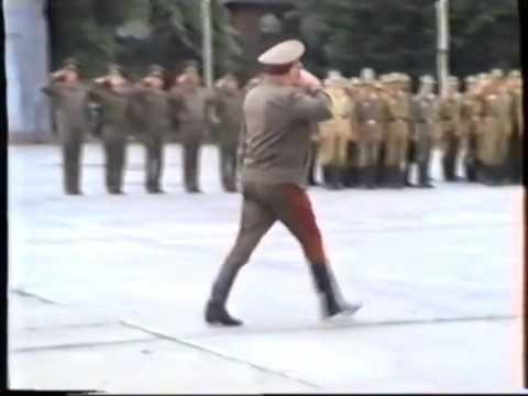 Бранденбург 1993,вывод бригады