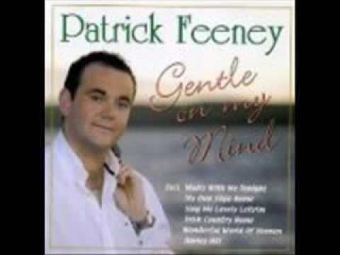 Patrick Feeney - Barley hill - irish music.wmv