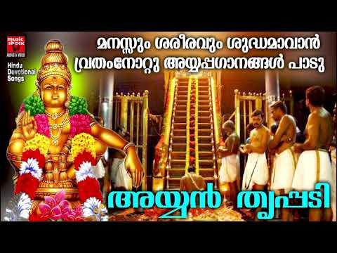 മനസ്സും ശരീരവും ശുദ്ധമാവാൻ വ്രതംനോറ്റും അയ്യപ്പഗാനങ്ങൾ പാടു|Ayyan Thrippadi |Hindu Devotional Songs