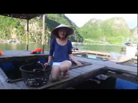 Thuy Nhung- Du Lich HLong Tap 1