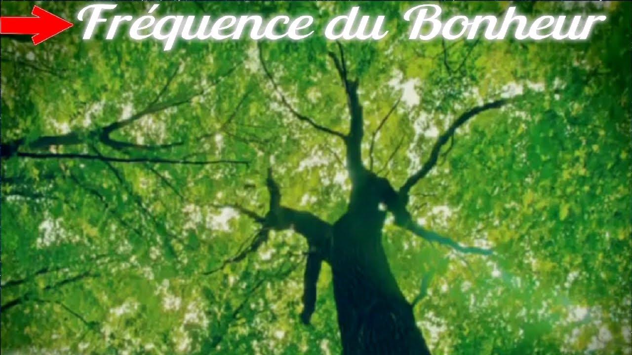 Download 432 hz Libère Fréquence du BONHEUR 【Nouveau 2021】 Libérer Stress, Anxiété ,Endorphine , Sérotonine