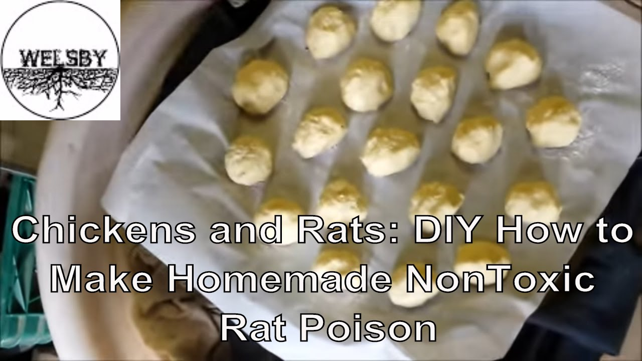 how to use rat poison