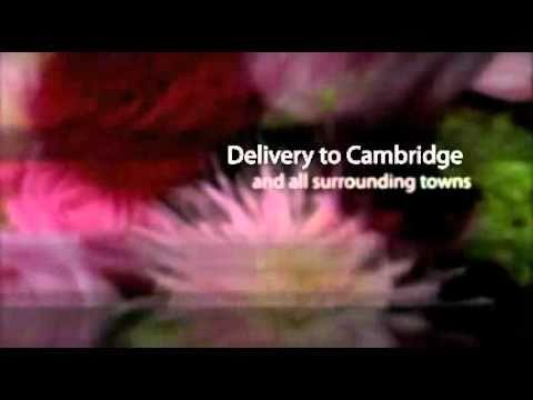 Flower Delivery Cambridge