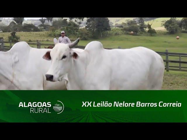 XX Leilão Nelore Barros Correia