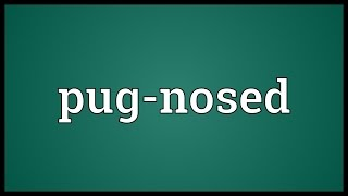 Pug-nosed Meaning