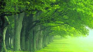Yann Tiersen - Summer 78 [HD]