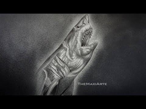 Dibujo Realista de un Aterrador Tiburón Blanco a Lápiz