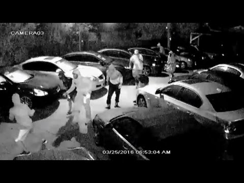 Watch Bold Burglars Drive Off With 8 Stolen Cars From Dealership