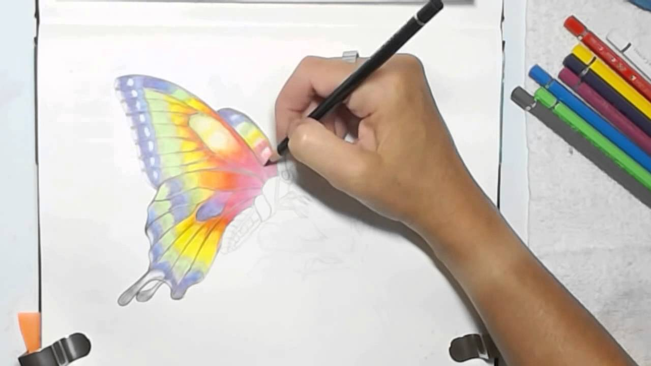 Painting a Watercolor Pencils Butterfly by Dion Dior - YouTube