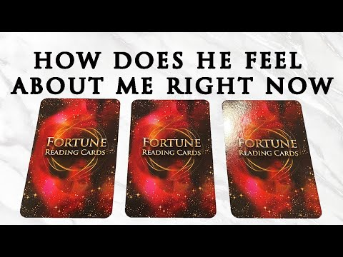 💞WHAT DOES HE/SHE THINK AND FEEL ABOUT ME RIGHT NOW?💞 |🔮Pick A Card🔮 | Love Tarot Reading (Timeless)