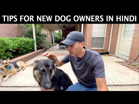 Tips For New Puppy or Dog Owners | Hindi Vlog | Indian Vlogger | This Indian