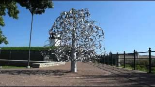 Свадебное дерево в Нарве.