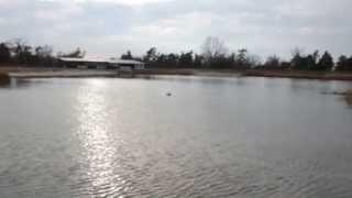 Увеличение скорости кораблика для рыбалки Jabo, после замены аккумулятора