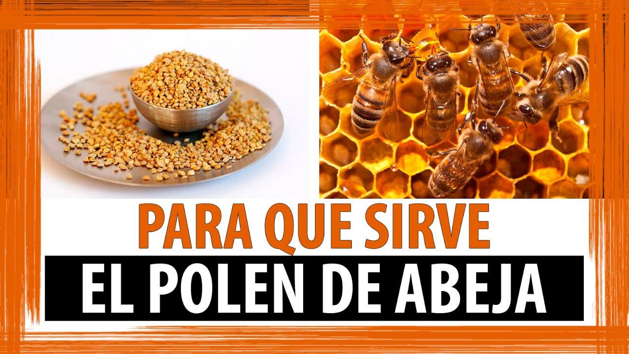Propiedades del polen beneficios del polen para que for Para que se utiliza el marmol