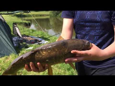 Church Stretton Pools Carp Fishing