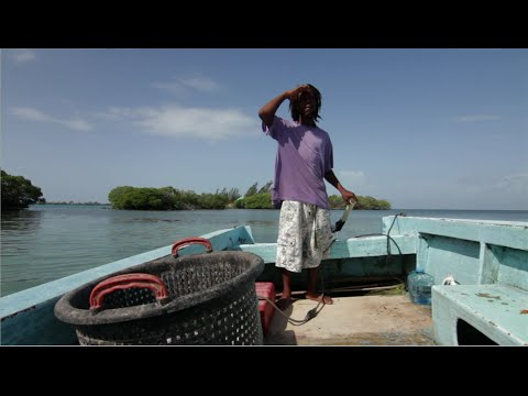 Fishing: A Belizean Way Of Life | WCS Belize Program
