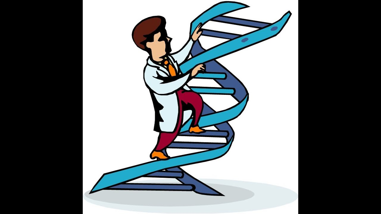 Dont buy dna wealth blueprint by andrew fox peter parks dna dont buy dna wealth blueprint by andrew fox peter parks dna wealth blueprint video review malvernweather Image collections