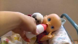 Diverti Toys thumbnail