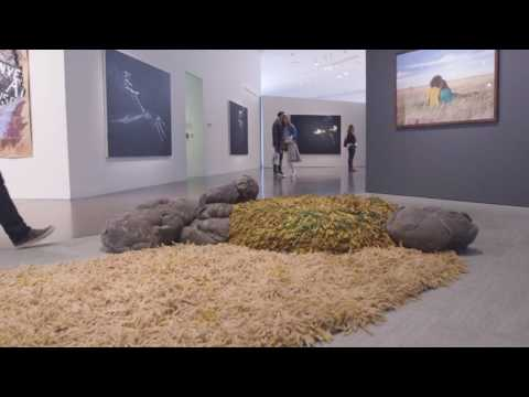 "Take a Virtual Tour of ""Mi Tierra: Contemporary Artists Explore Place"""