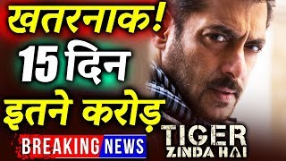 Salman Khan's Tiger Zinda Hai 15th Day Collection | Box Office