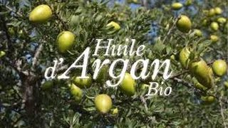 Soin du corps *5 : Masque hydratant à l'huile d'argan pour le visage