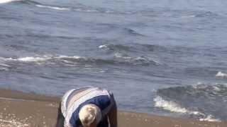 Kasım AVCI Ünye 39 nin Cüri Sahillerinde 16 10 2013 2