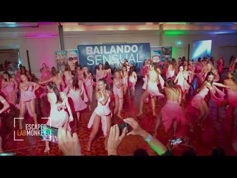 Sara Panero Ladies Team