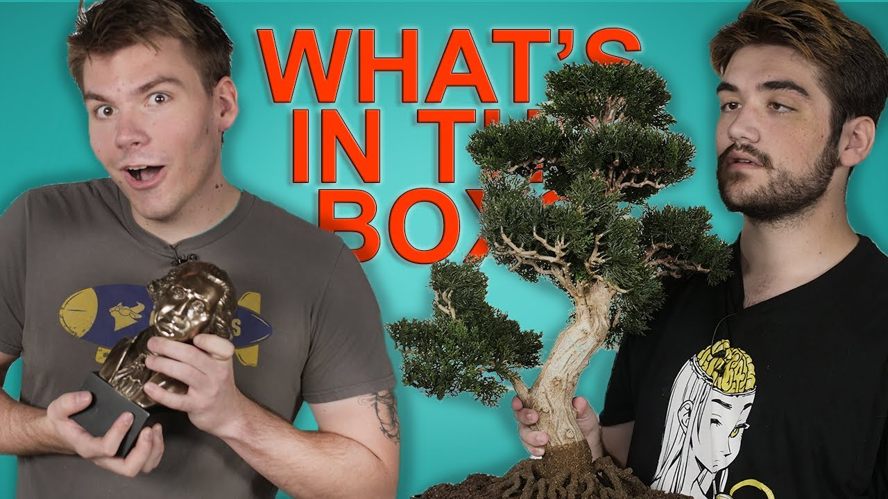 WHAT'S IN THE BOX CHALLENGE (feat  Trevor & Asher)