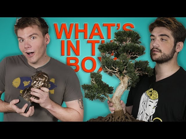 WHAT'S IN THE BOX CHALLENGE (feat. Trevor & Asher)