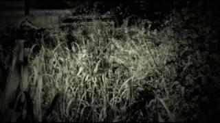 Fitzcarraldo - Die Oper Im Dschungel / Pachumea
