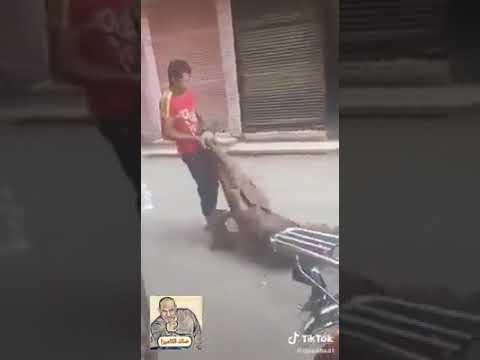 سحل رجل مسن في مصر بطريقة مقرفة ومقززة