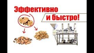 Как отделить скорлупу от ядра? Обзор вибросита с аспирацией для сортировки ядра грецкого ореха