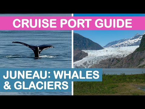 Juneau, Alaska Cruise Port Guide: Whale Watching & Mendenhall Glacier Tour