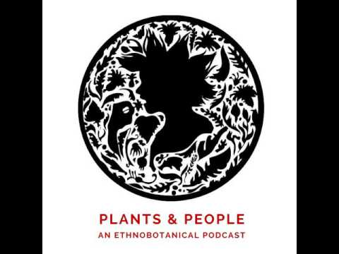 Nathaniel Hughes On Intuitive Herbalism